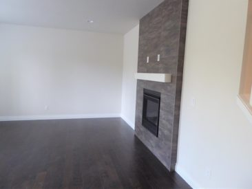 Family Room Fireplace - LCD